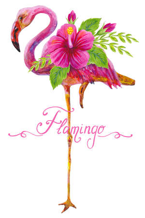 Hand drawn watercolor painting  with pink flamingo and Chinese Hibiscus rose flowers isolated on white background. Floral summer ornament. Design element. Stockfoto