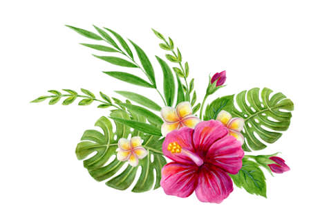 Hand drawn watercolor painting with pink Chinese Hibiscus rose, plumeria flowers, monstera palm leaf and palm fronds isolated on white background. Floral summer tropical ornament. Design element. Stockfoto