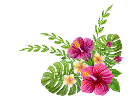 Hand drawn watercolor painting with pink  Hibiscus rose, plumeria flowers, monstera palm leaf and palm fronds isolated on white Stockfoto
