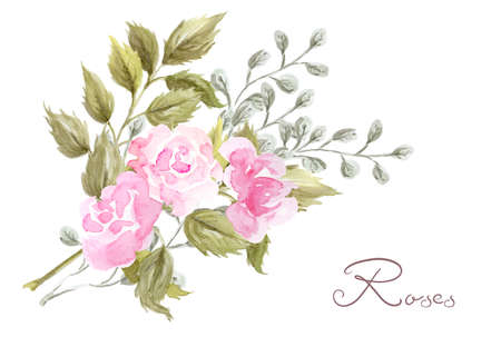 Hand drawn watercolor painting with pink roses flowers bouquet isolated on white background. Floral summer ornament. Design element.