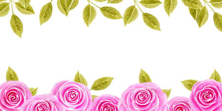Hand drawn watercolor painting with pink roses flowers border isolated on white background. Floral ornament. Design element.
