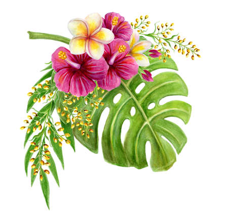 Tropical bouquet of hibiscus rose, frangipani and greenery of monstera leaf and palm fronds. Exotic floral composition hand drawn watercolor painting of natural leaves and flowers isolated on white. 免版税图像