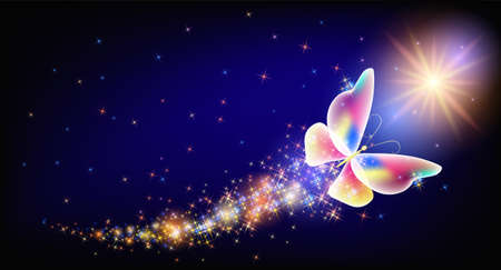 Flying transparent delightful butterfly with sparkle and blazing trail flying in night sky among shiny glowing stars in cosmic space. Animal protection day concept. 矢量图像