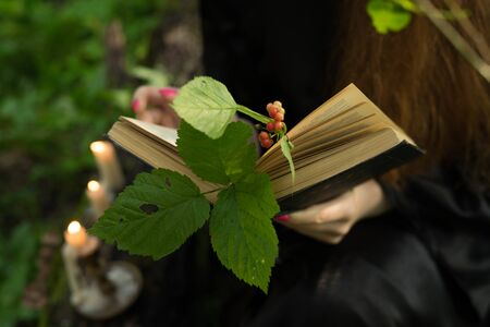 a girl is reading a book, and instead of a bookmark, a twig 写真素材