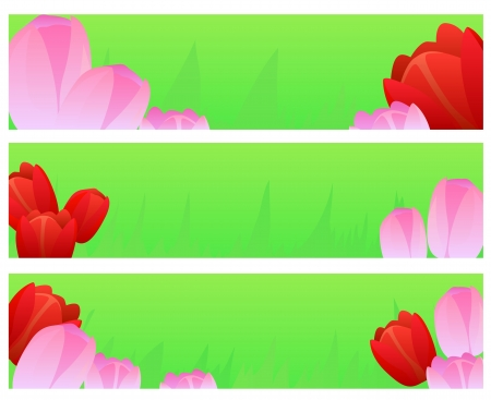 vector banners with tulips Stock Vector - 18068933