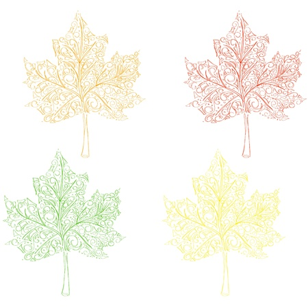 ecoration: maple leaves Illustration