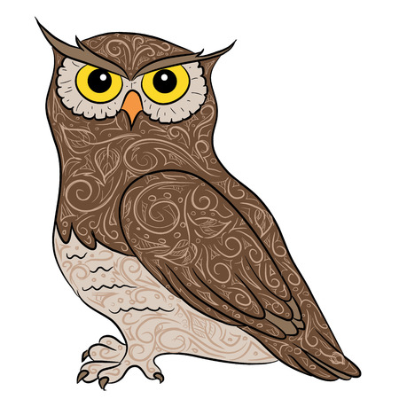 hand drawing owl