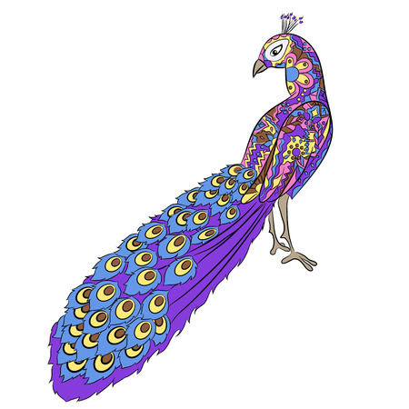 tuft: Stylized hand drawing peacock