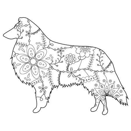 collie: Collie dog colring