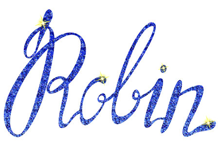 robin: Vector Robin name lettering tinsels