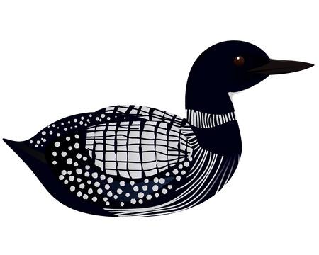 Loon bird cartoon vector illustration Ilustração