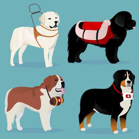 Set von Hunden Retter und Helfer Vektor-Illustration Standard-Bild - 75451761