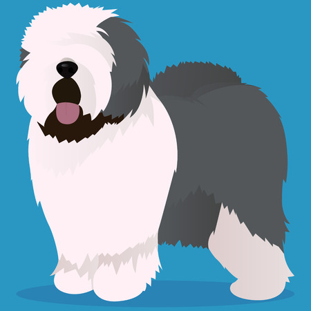 Old English Sheepdog vector illustration