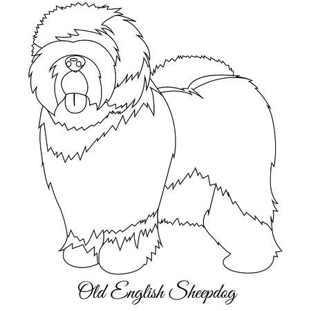 Old English Sheepdog outline vector illustration Illustration