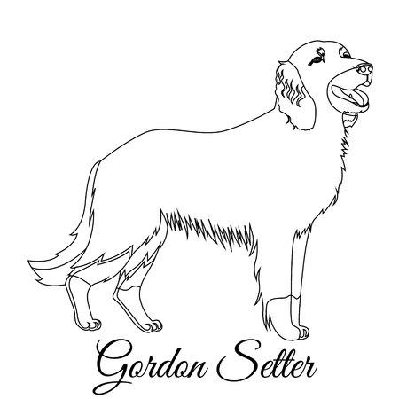 Gordon setter outline on white background, vector illustration.