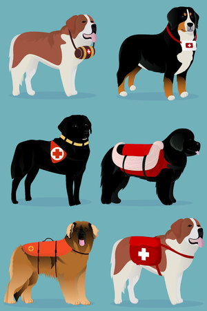 Set of dogs rescuers vector illustration Çizim