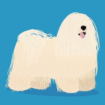 Puli dog cartoon vector illustration. Çizim