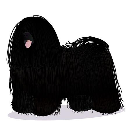 Puli dog cartoon black