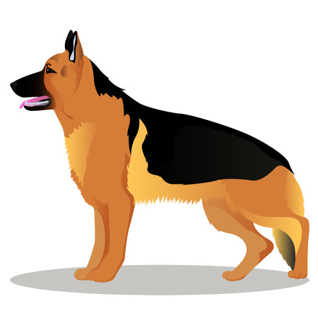 German shepherd cartoon dog illustration.