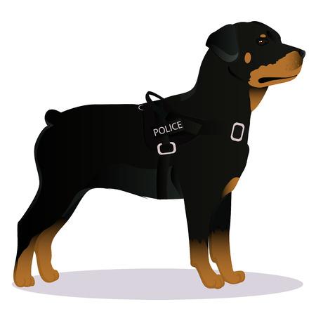 Rottweiler Police dog Illustration