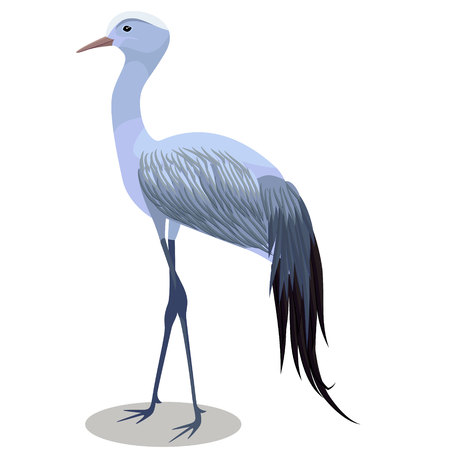 Blue crane vector cartoon illustration