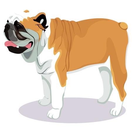 Image of a dog in white backdrop illustration.