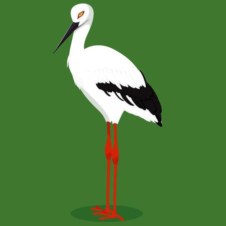 Oriental stork cartoon bird