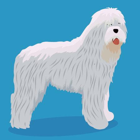 South Russian Ovcharka vector illustration