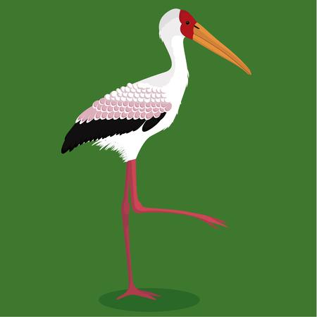 Yellow billed stork cartoon bird vector illustration