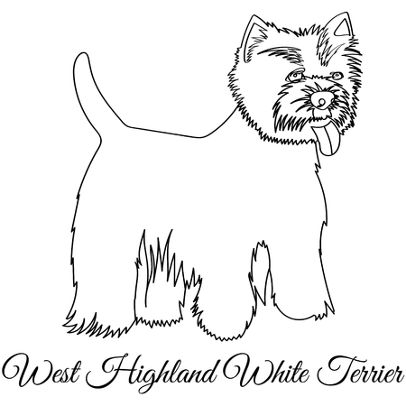 West highland white terrier dog coloring