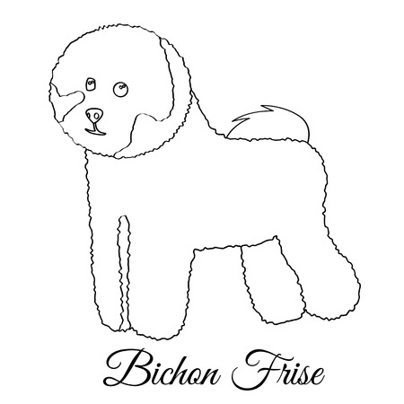 Bichon frise dog coloring