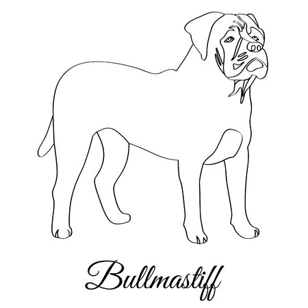 Bullmastiff dog coloring