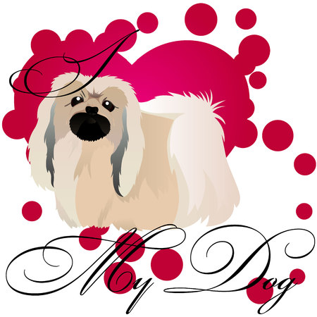 I love my Pekingese vector illustration