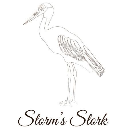 Storms stork cartoon bird coloring Illustration
