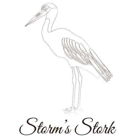Storms stork cartoon bird coloring Ilustração