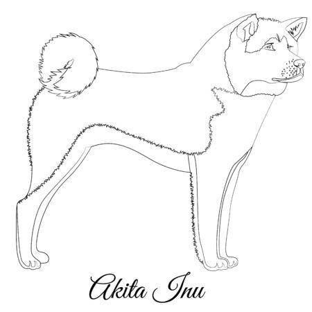 Akita inu dog outline Standard-Bild - 127908626