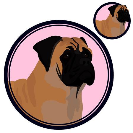 Bullmastiff head in circle vector illustration  イラスト・ベクター素材