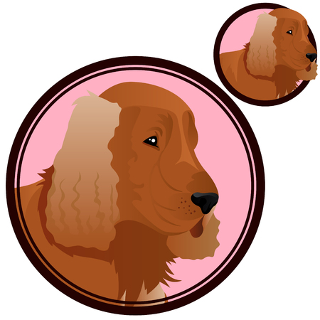Cocker spaniel head in circle vector illustration  イラスト・ベクター素材
