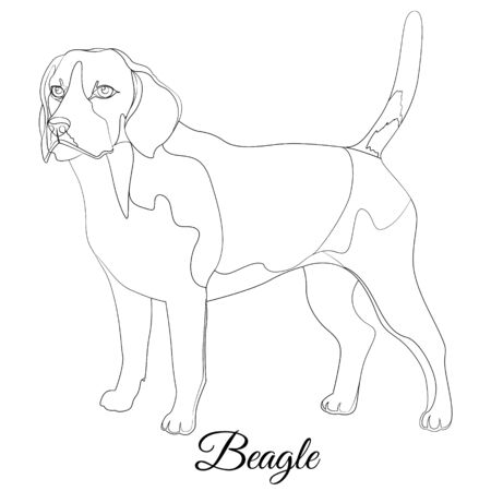 Beagle cartoon dog breed outline Illustration