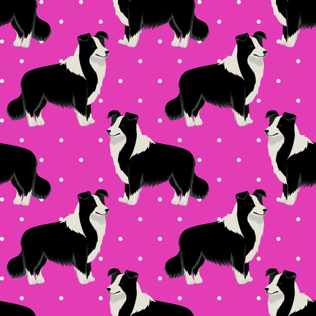 Border Collie dog seamless pattern vector illustration
