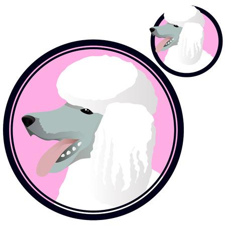 Poodle dog head in circle Ilustração