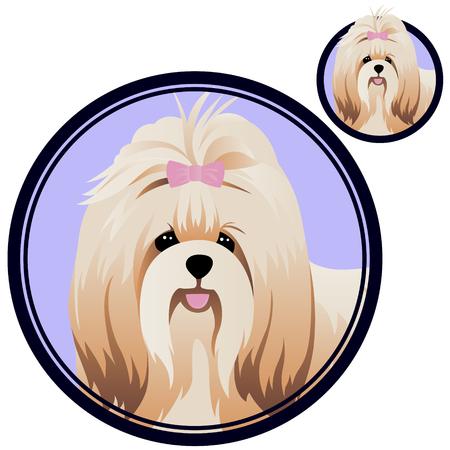 Shih tzu head in circle vector illustration