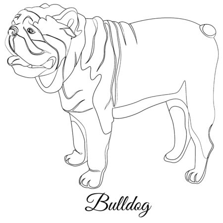 Bulldog cartoon dog coloring. Outline