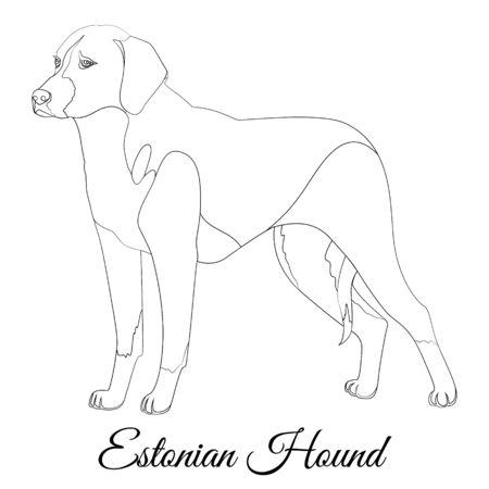 Estonian hound cartoon dog outline