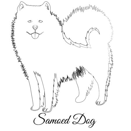 Samoed dog cartoon outline vector Фото со стока - 135036909