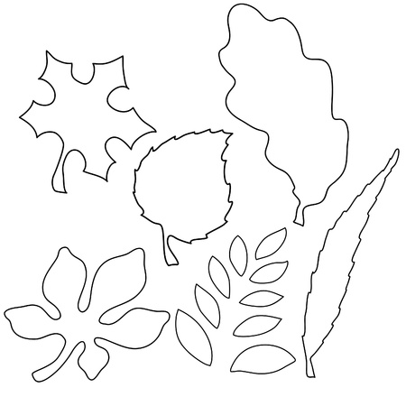 ash tree: Vector image of leaves