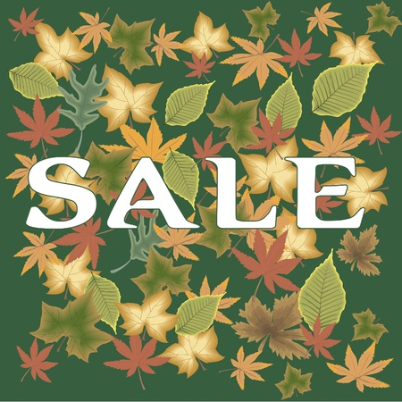 Vector image of leaves Stock Vector - 10225911