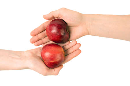 Two hands with parts of apple photo