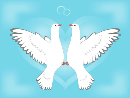 Dove and love