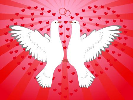 pigeons, heart Vector